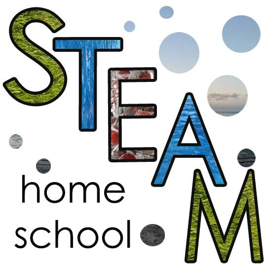 The STEAM School